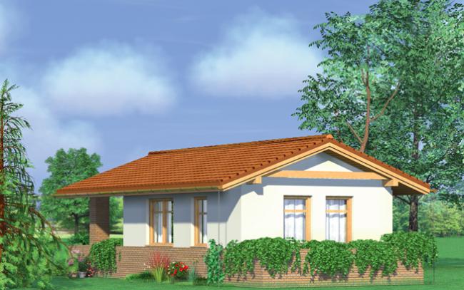 Проект дома-7