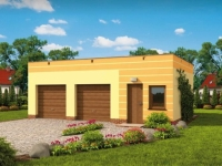 Проект гаража-173